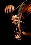 La Musique sans marteau