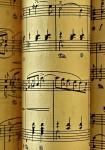 Quatuor Béla : Beethoven, Bartók, Combier