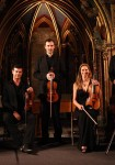 Orchestre les Violons de France, Cécile Besnard