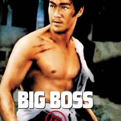 Big Boss - Affiche