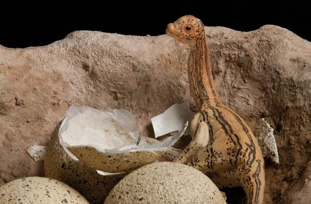 « Dinosaure » au Museum d'histoire naturelle : c'est géant !