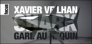XAVIER VEILHAN - SHARK, 2008