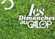 Dimanches au galop
